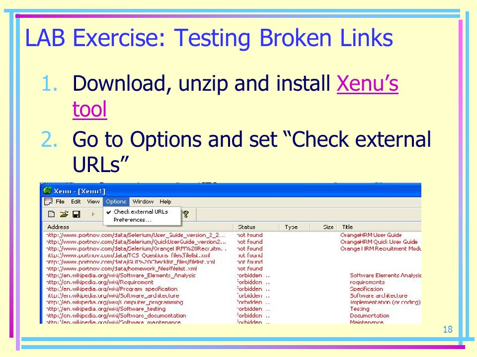 18 LAB Exercise: Testing Broken Links 1.Download, unzip and install Xenus toolXenus tool 2.Go to Options and set Check external URLs