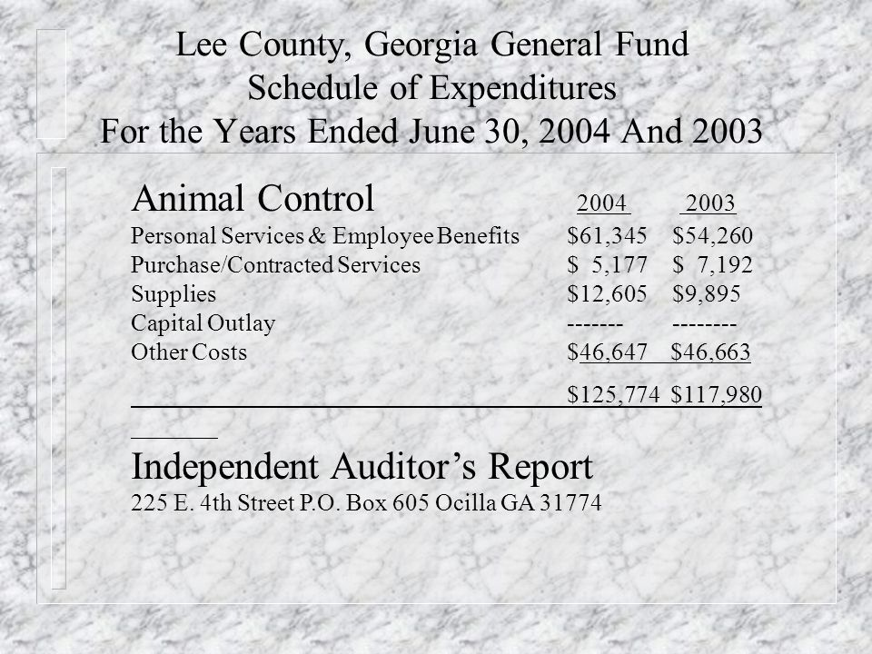 Lee County, Georgia General Fund Schedule of Expenditures For the Years Ended June 30, 2004 And 2003 Animal Control Personal Services & Employee Benefits$61,345 $54,260 Purchase/Contracted Services$ 5,177 $ 7,192 Supplies$12,605 $9,895 Capital Outlay Other Costs$46,647 $46,663 $125,774 $117,980 Independent Auditors Report 225 E.