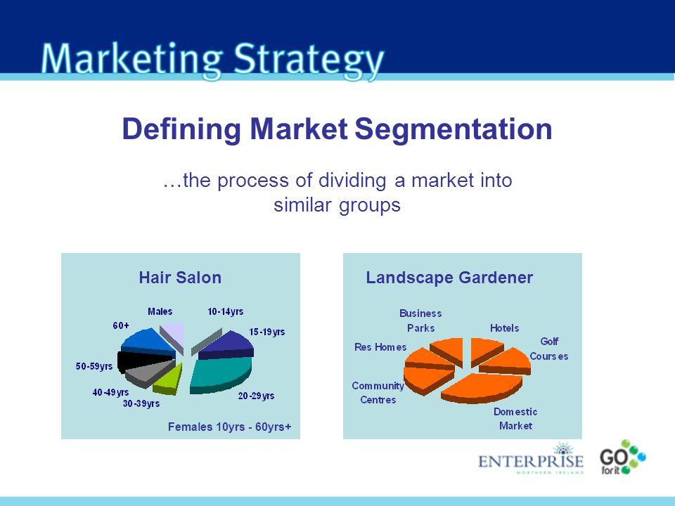 Landscape GardenerHair Salon Defining Market Segmentation …the process of dividing a market into similar groups Females 10yrs - 60yrs+
