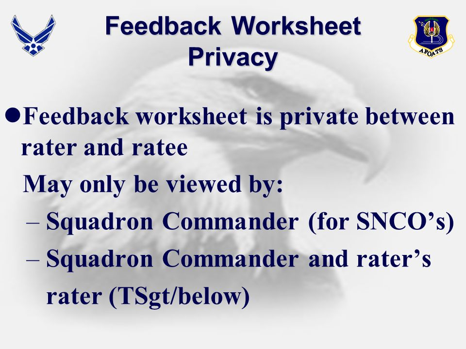 Feedback Worksheet Privacy Feedback worksheet is private between rater and ratee May only be viewed by: – Squadron Commander (for SNCOs) – Squadron Co