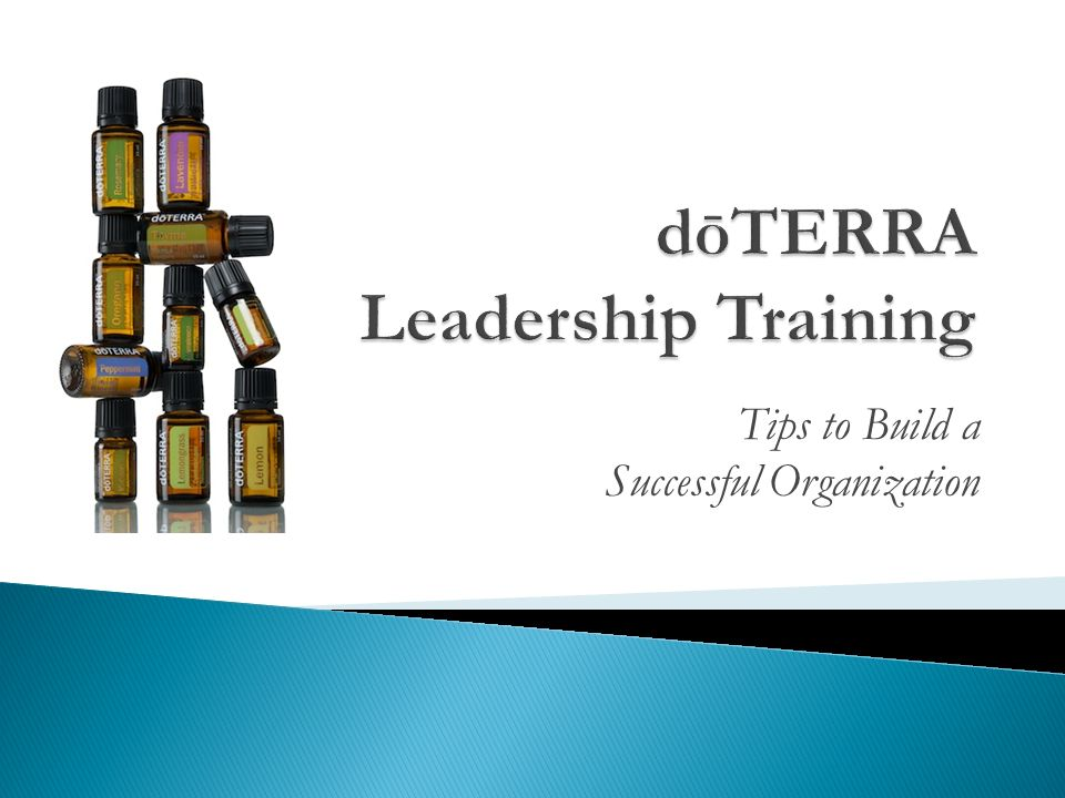 Tips to Build a Successful Organization