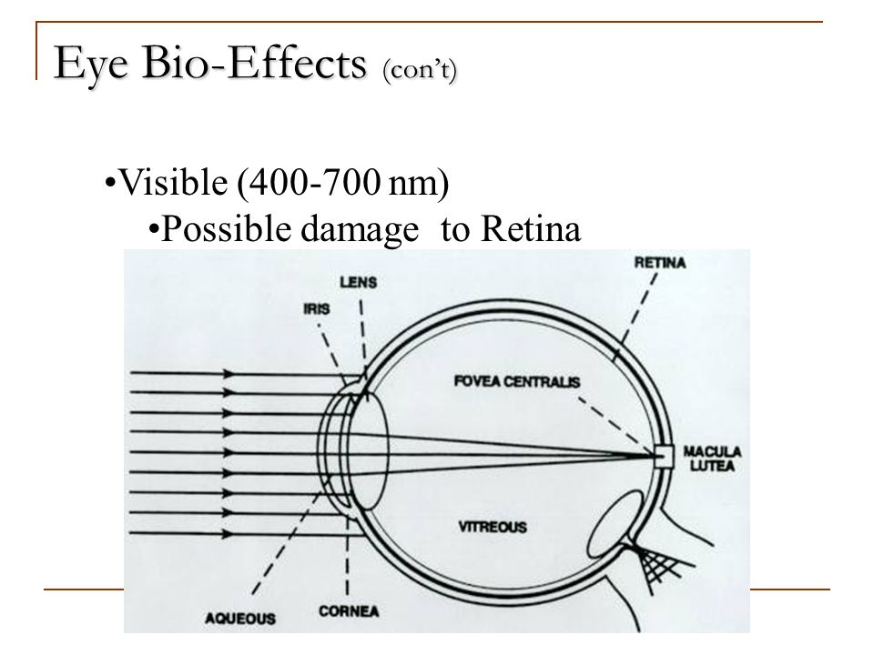Eye Bio-Effects (cont) Visible (400-700 nm) Possible damage to Retina