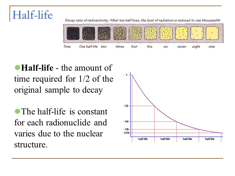 Half-life - the amount of time required for 1/2 of the original sample to decay The half-life is constant for each radionuclide and varies due to the