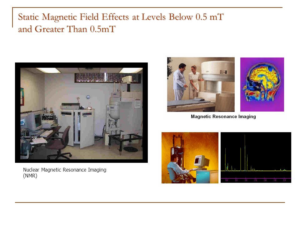 Static Magnetic Field Effects at Levels Below 0.5 mT and Greater Than 0.5mT Nuclear Magnetic Resonance Imaging (NMR)