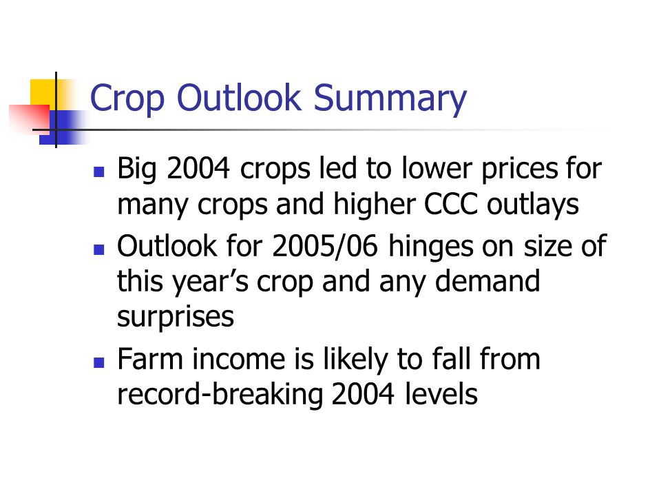 Crop Outlook Summary Big 2004 crops led to lower prices for many crops and higher CCC outlays Outlook for 2005/06 hinges on size of this years crop and any demand surprises Farm income is likely to fall from record-breaking 2004 levels
