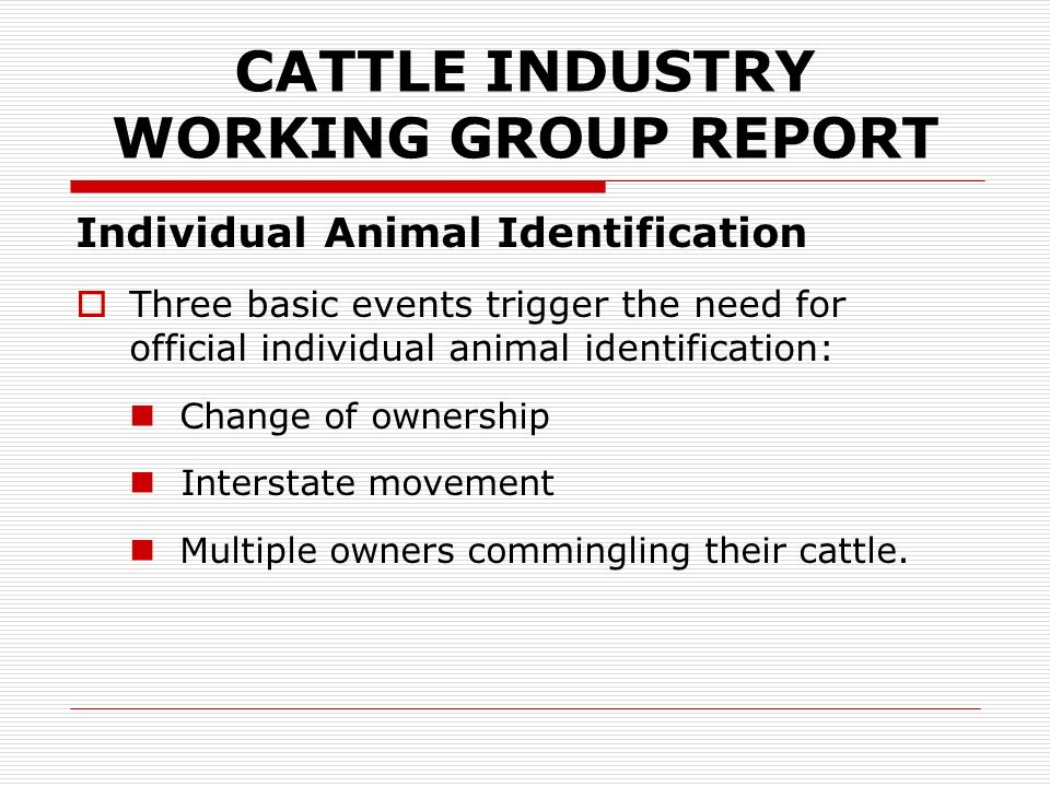 CATTLE INDUSTRY WORKING GROUP REPORT Individual Animal Identification When individual identification is required, the owner / seller is the person ultimately responsible for applying the official RFID tag TO THE LEFT EAR of all animals.