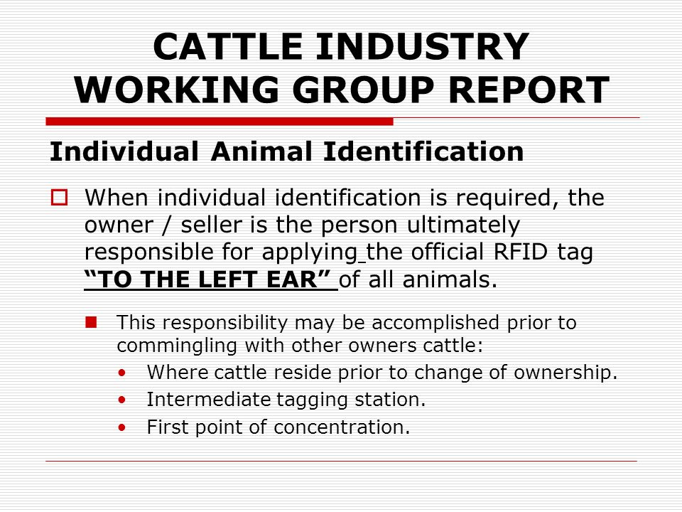 CATTLE INDUSTRY WORKING GROUP REPORT Reporting Cattle Movements Officially identified animals that die on-farm or ranch must be reported.