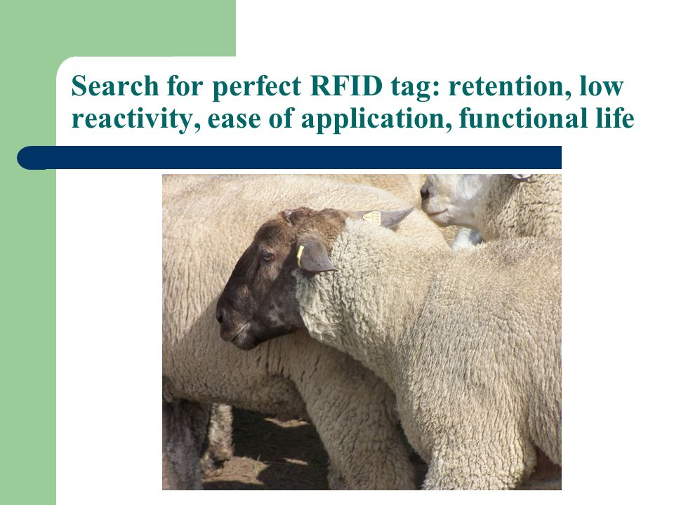 Search for perfect RFID tag: retention, low reactivity, ease of application, functional life