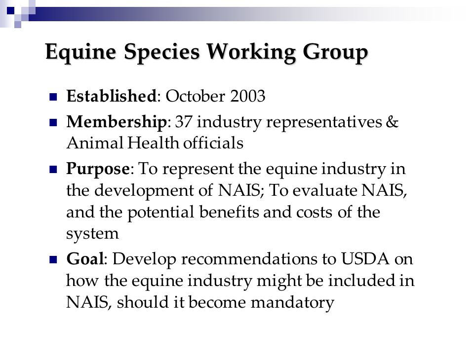 Equine Species Working Group Established: October 2003 Membership: 37 industry representatives & Animal Health officials Purpose: To represent the equ