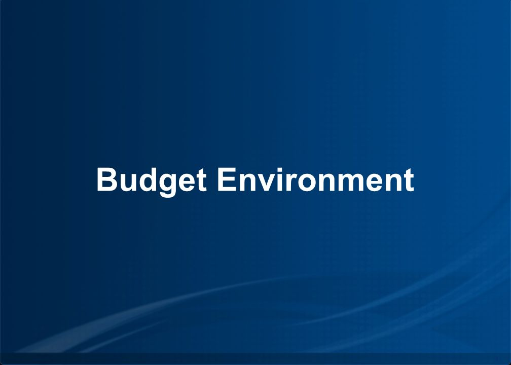 Copyright © by INPUT. All rights reserved. 4 Budget Environment