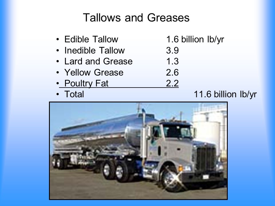 Tallows and Greases Edible Tallow1.6 billion lb/yr Inedible Tallow3.9 Lard and Grease1.3 Yellow Grease2.6 Poultry Fat2.2 Total 11.6 billion lb/yr