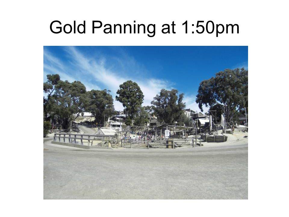 Gold Panning at 1:50pm