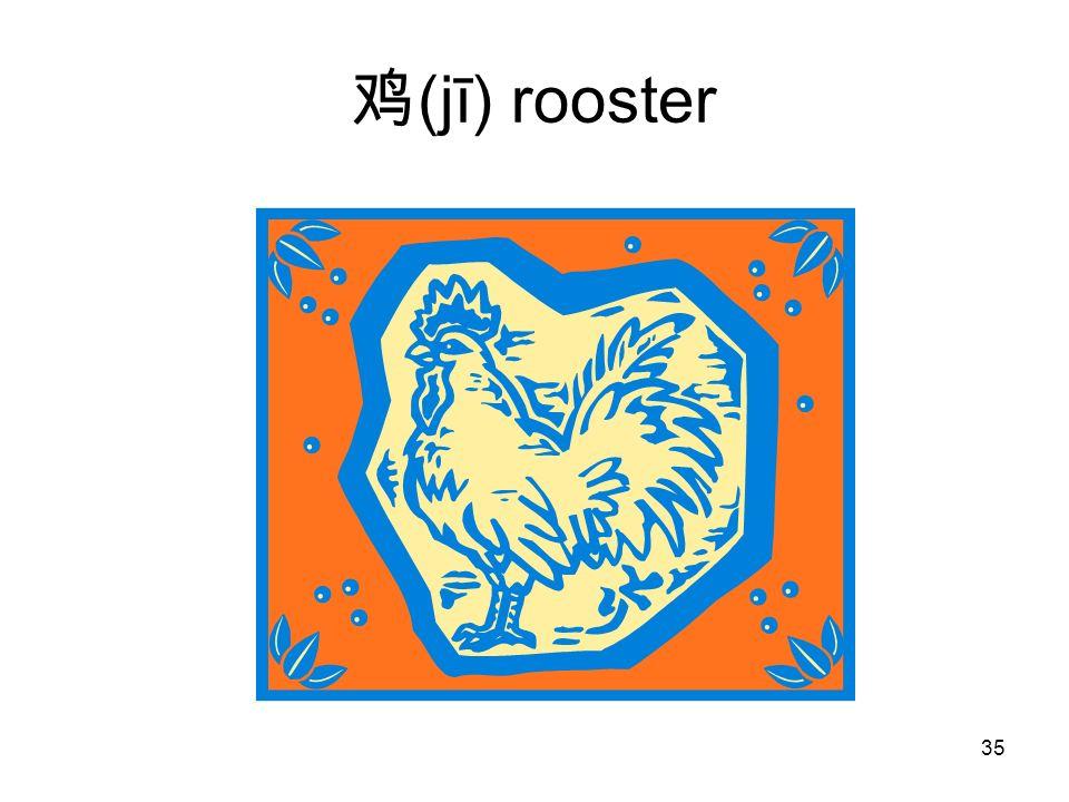 (jī) rooster 35
