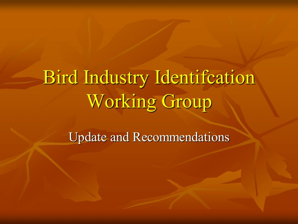 Bird Industry Identifcation Working Group Update and Recommendations