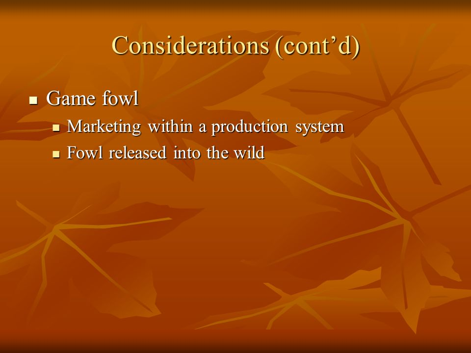 Considerations (contd) Game fowl Game fowl Marketing within a production system Marketing within a production system Fowl released into the wild Fowl released into the wild
