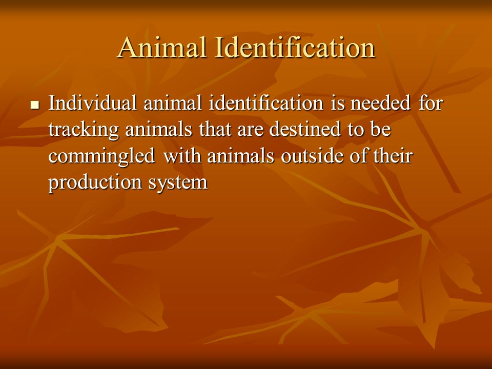 Animal Identification Individual animal identification is needed for tracking animals that are destined to be commingled with animals outside of their