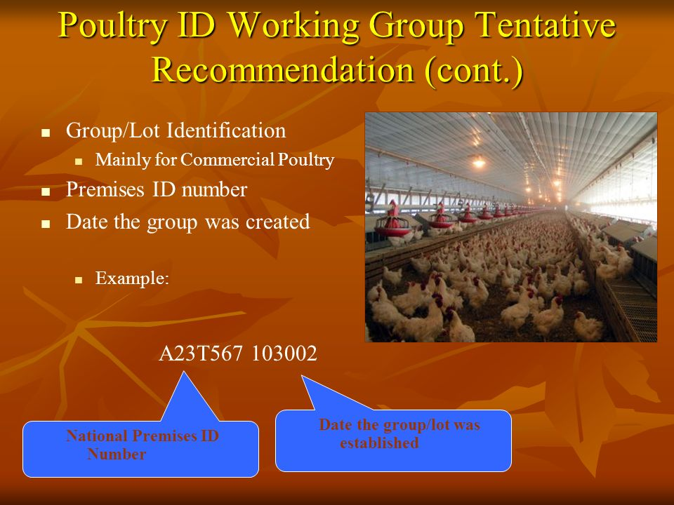 Poultry ID Working Group Tentative Recommendation (cont.) Group/Lot Identification Mainly for Commercial Poultry Premises ID number Date the group was created Example: National Premises ID Number A23T567 103002 Date the group/lot was established