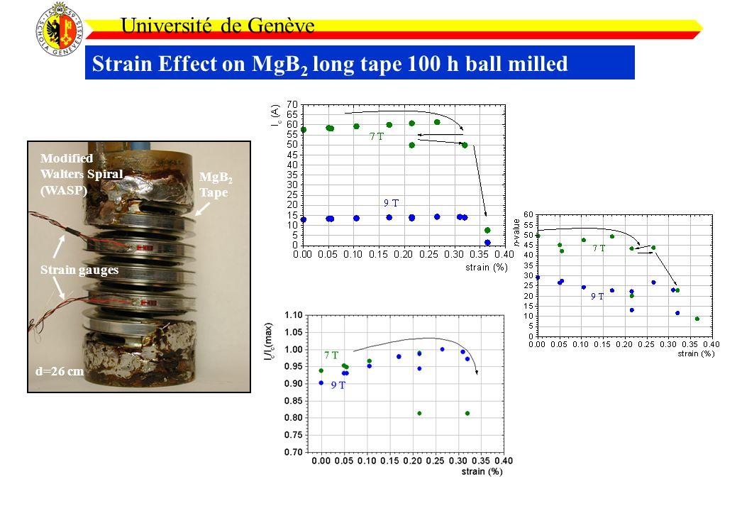 Strain Effect on MgB 2 long tape 100 h ball milled Université de Genève Strain gauges Modified Walter s Spiral (WASP) MgB 2 Tape d=26 cm