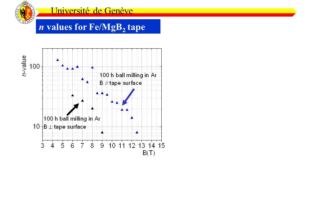 n values for Fe/MgB 2 tape Université de Genève