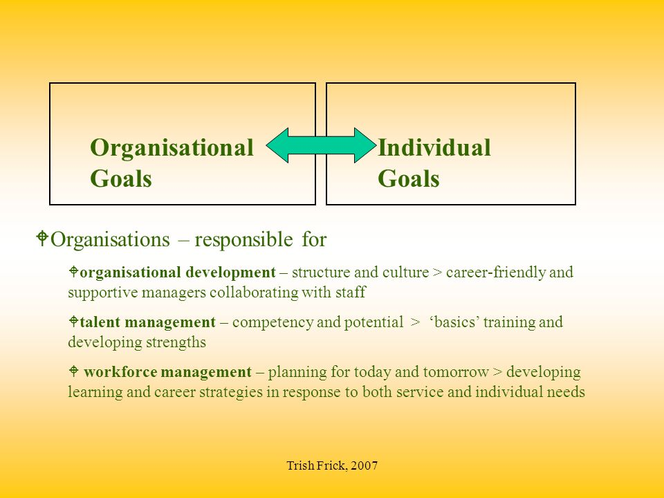 Trish Frick, 2007 Organisational Goals Individual Goals WOrganisations – responsible for Worganisational development – structure and culture > career-