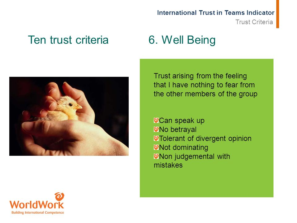 International Trust in Teams Indicator Ten trust criteria 6. Well Being Trust arising from the feeling that I have nothing to fear from the other memb