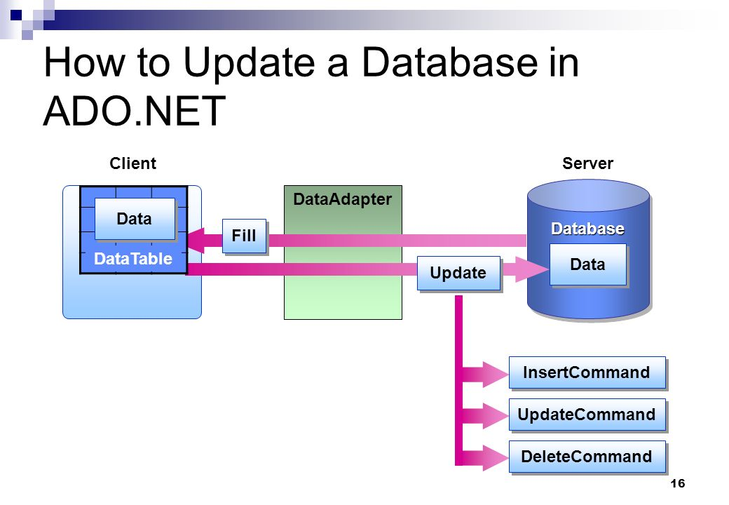 16 How to Update a Database in ADO.NET DataSet Client DataAdapter DatabaseDatabase Server Data Fill Update DeleteCommand UpdateCommand InsertCommand D