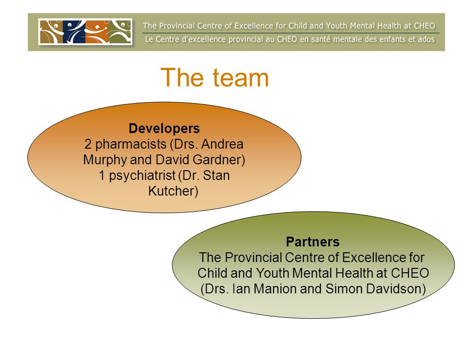 The team Developers 2 pharmacists (Drs. Andrea Murphy and David Gardner) 1 psychiatrist (Dr.