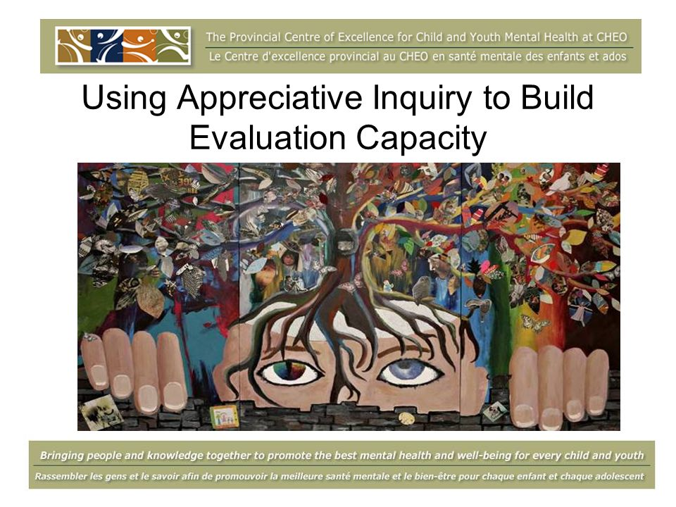 Objectives Understand the basic principles of Appreciative Inquiry (AI) Understand the structures and processes in building evaluation capacity Experience the first phase of AI Explore how AI can be applied in building evaluation capacity in own context