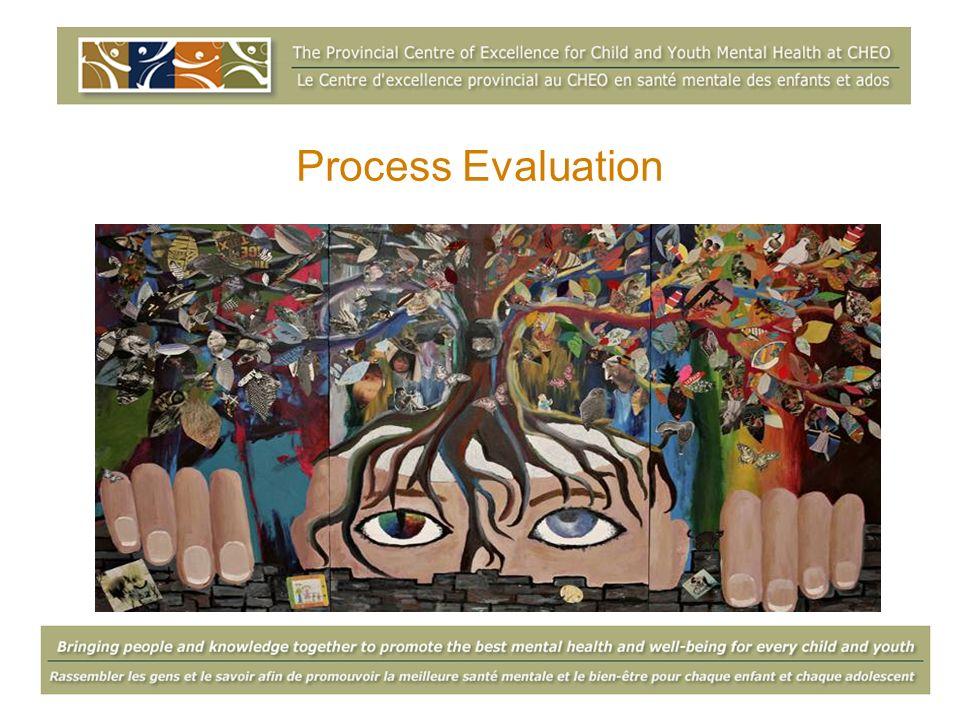 Process Evaluation