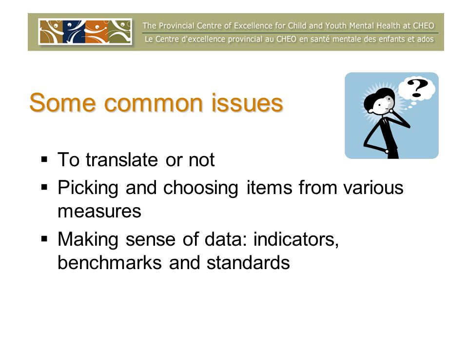 Some common issues To translate or not Picking and choosing items from various measures Making sense of data: indicators, benchmarks and standards