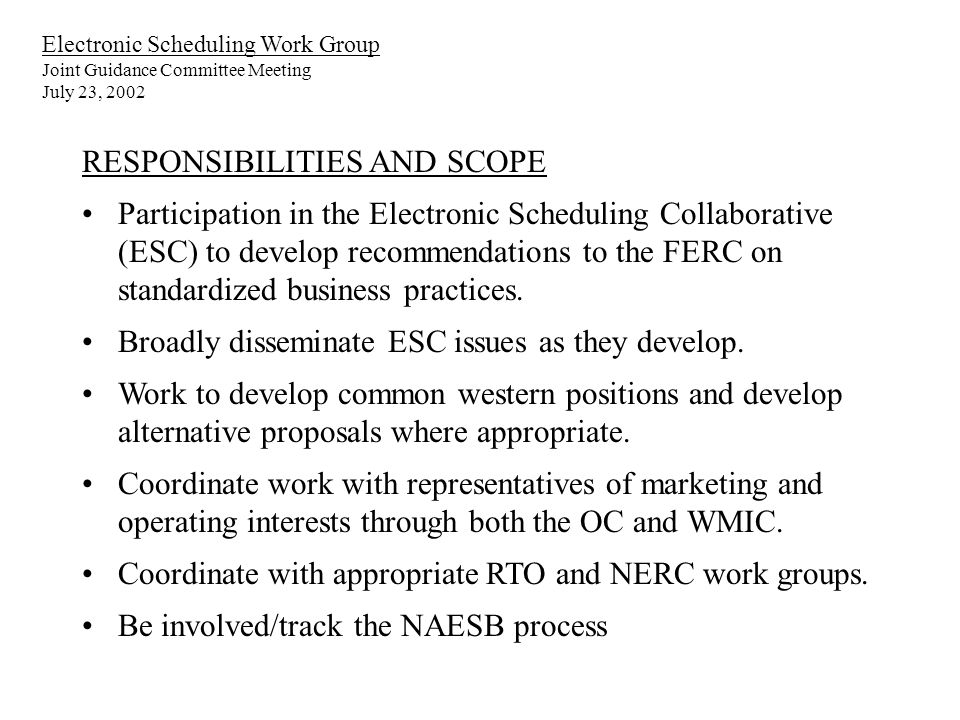 Electronic Scheduling Work Group Joint Guidance Committee Meeting July 23, 2002 RESPONSIBILITIES AND SCOPE Participation in the Electronic Scheduling