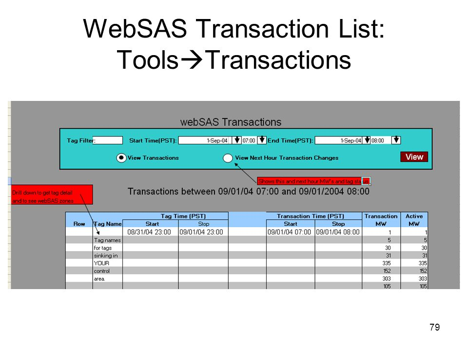 79 WebSAS Transaction List: Tools Transactions