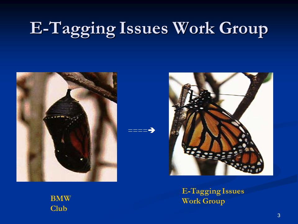 3 E-Tagging Issues Work Group BMW Club E-Tagging Issues Work Group ====