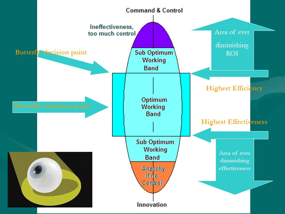A. Maher (insert pic) published this diagram in 2002 as part of her paper Wheel of Wisdom