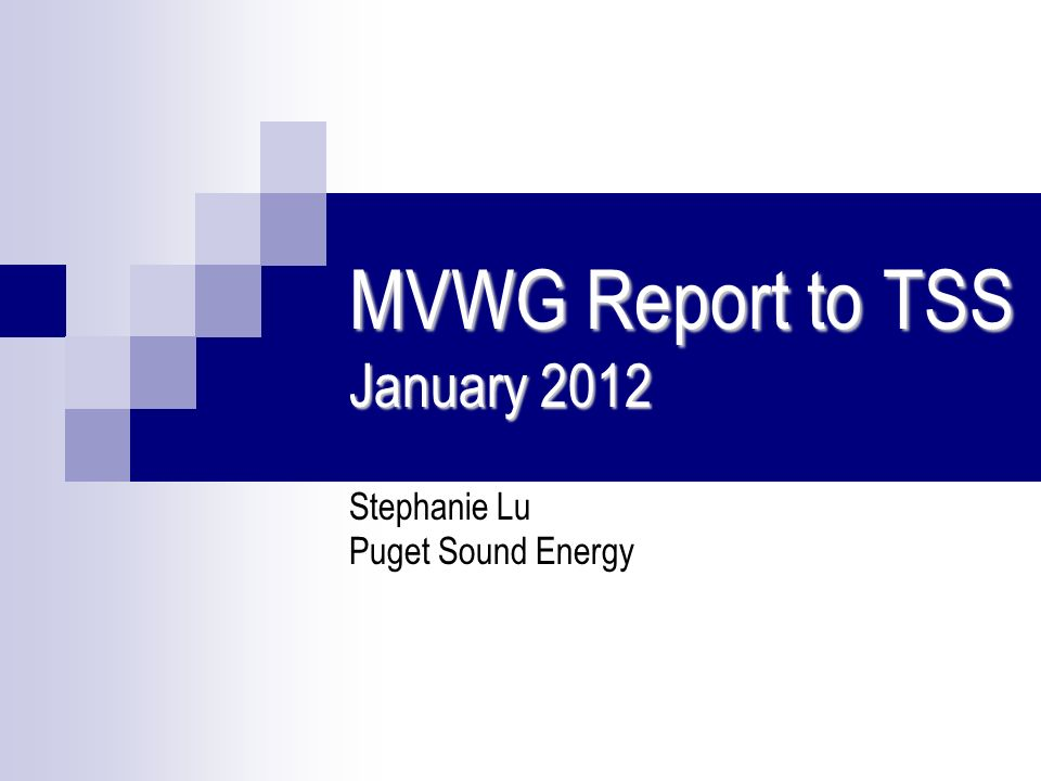 MVWG Report to TSS January 2012 Stephanie Lu Puget Sound Energy