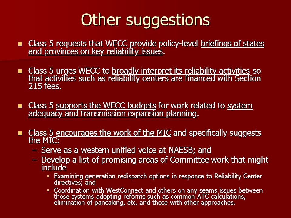 Other suggestions Class 5 requests that WECC provide policy-level briefings of states and provinces on key reliability issues. Class 5 requests that W