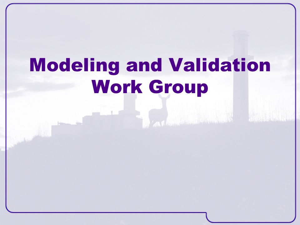Modeling and Validation Work Group