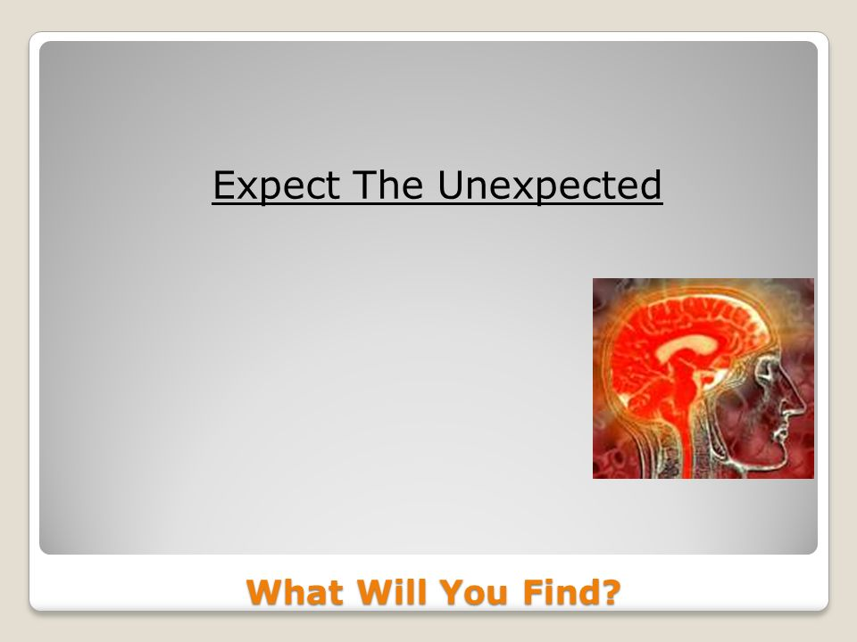 What Will You Find Expect The Unexpected