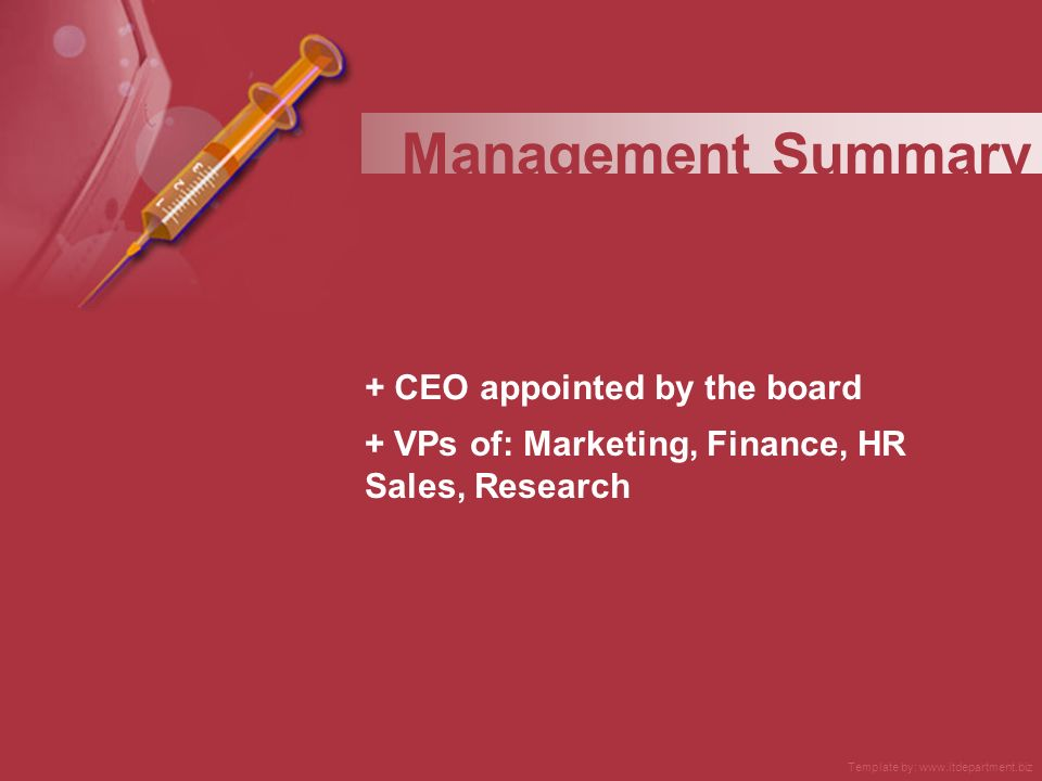 + CEO appointed by the board + VPs of: Marketing, Finance, HR Sales, Research Management Summary Template by: www.itdepartment.biz