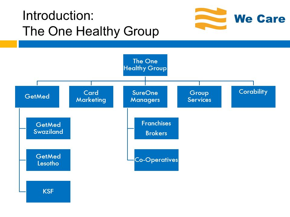 The One Healthy Group: Key Competencies We Care First class systems and infrastructure Member focussed business approach Implementation CareDevelopment Product and Services Development Product innovation to market requirements Managed Care ensuring quality and affordability Reducing cost while increasing quality/access of care Regular member communication