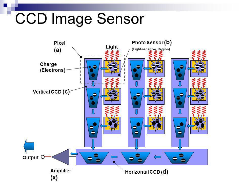 Light Charge (Electrons) Photo Sensor (b) (Light-sensitive Region) Vertical CCD (c) Horizontal CCD ( d) Amplifier (x) Pixel (a) Output CCD Image Sensor