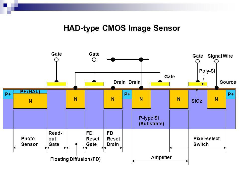 P+ N NNN Photo Sensor Read- out Gate Floating Diffusion (FD) FD Reset Gate FD Reset Drain Amplifier Pixel-select Switch N N P-type Si (Substrate) P+ (HAL) Gate Drain Signal Wire HAD-type CMOS Image Sensor Source SiO 2 Poly-Si
