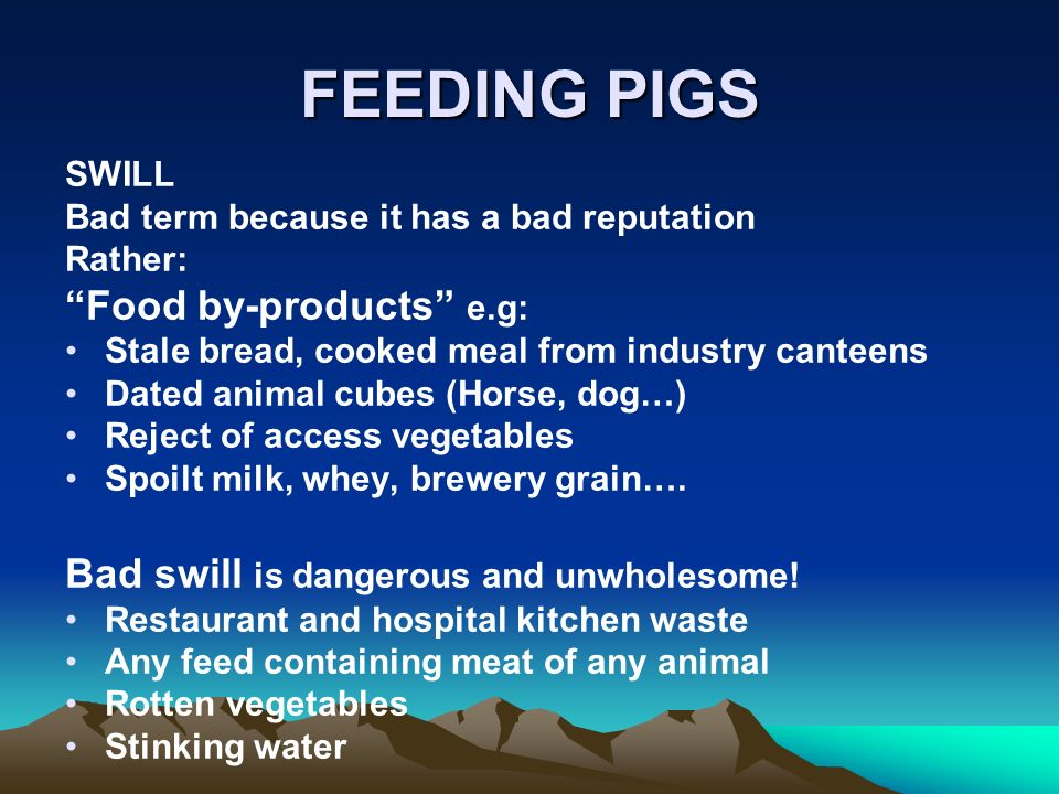 FEEDING PIGS SWILL Bad term because it has a bad reputation Rather: Food by-products e.g: Stale bread, cooked meal from industry canteens Dated animal cubes (Horse, dog…) Reject of access vegetables Spoilt milk, whey, brewery grain….