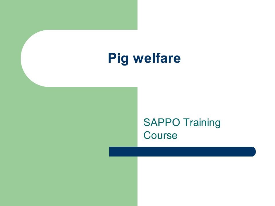 Pig welfare SAPPO Training Course