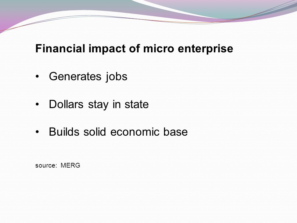 Financial impact of micro enterprise Generates jobs Dollars stay in state Builds solid economic base source: MERG