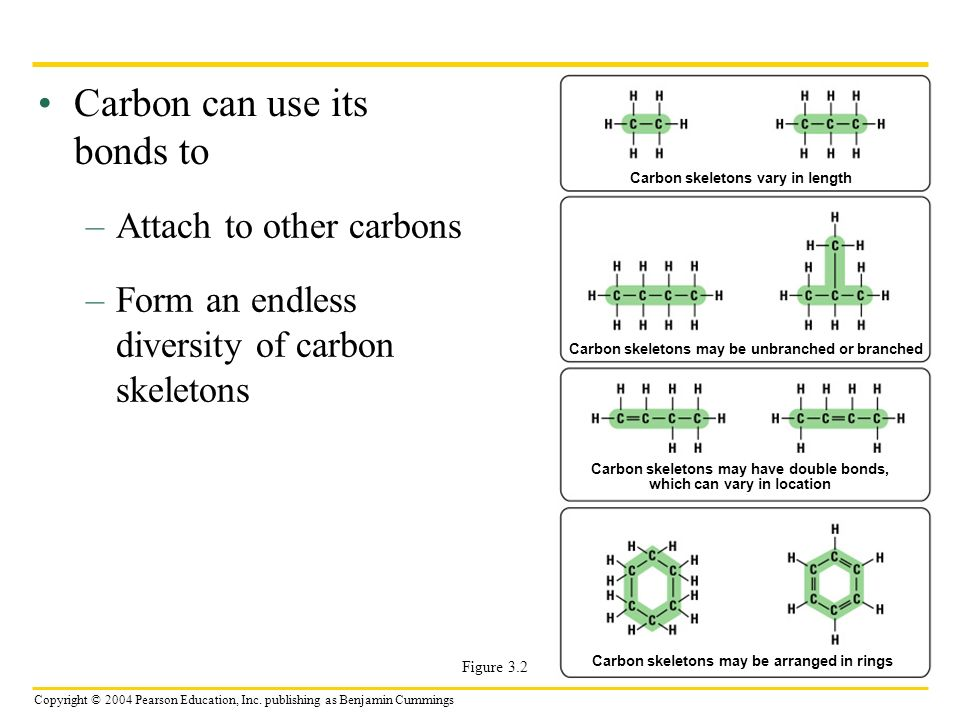 Copyright © 2004 Pearson Education, Inc. publishing as Benjamin Cummings Carbon can use its bonds to –Attach to other carbons –Form an endless diversi