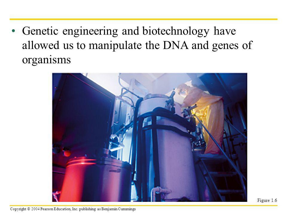 Copyright © 2004 Pearson Education, Inc. publishing as Benjamin Cummings Genetic engineering and biotechnology have allowed us to manipulate the DNA a
