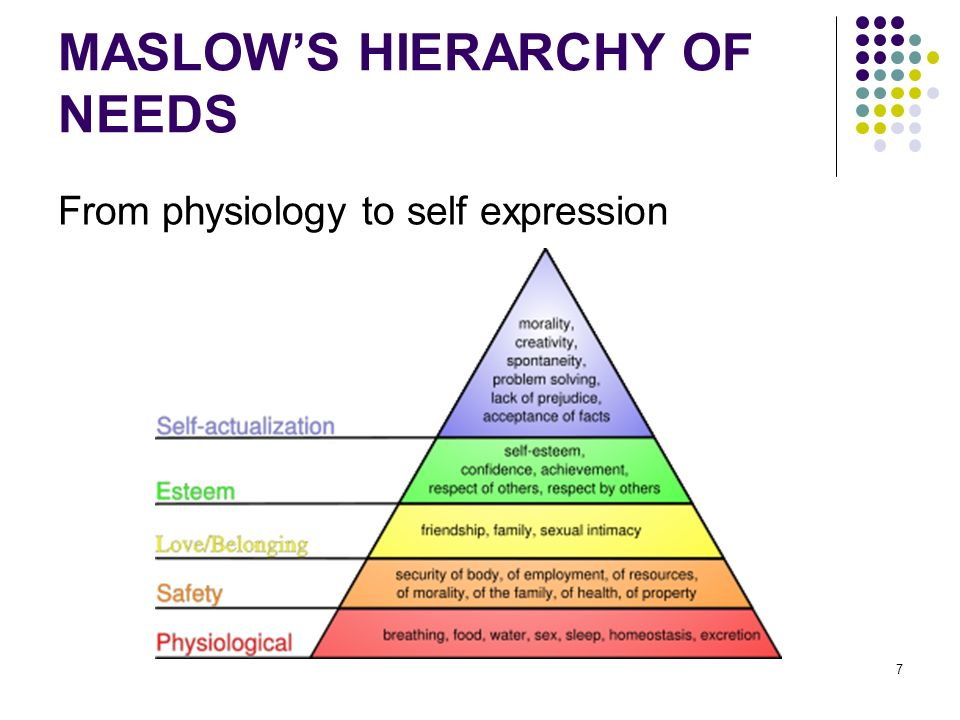7 MASLOWS HIERARCHY OF NEEDS From physiology to self expression