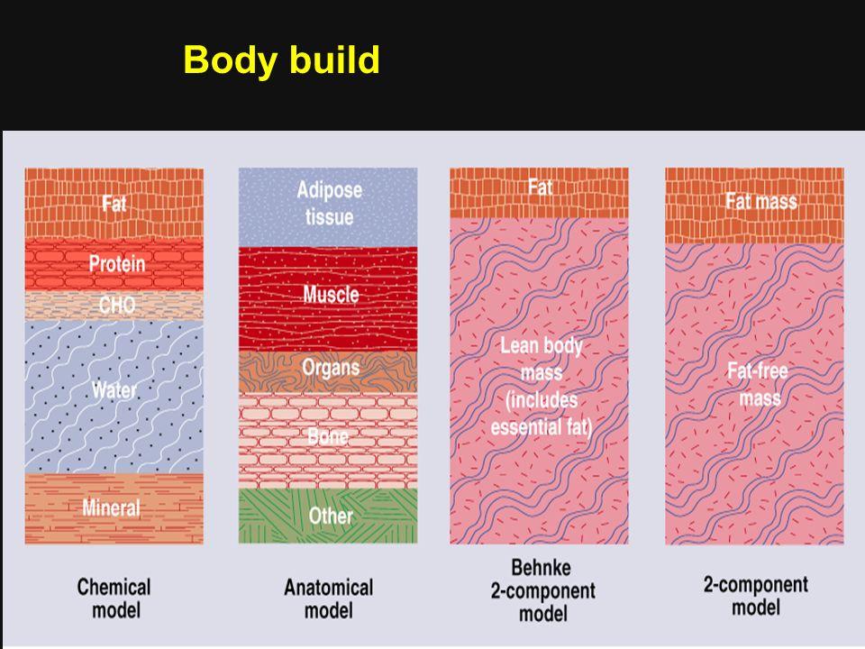 Body build