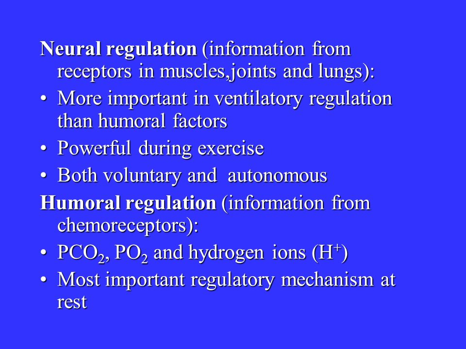 Neural regulation (information from receptors in muscles,joints and lungs): More important in ventilatory regulation than humoral factorsMore importan